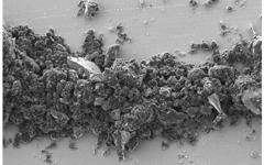 Silicon Carbide (SiC) Nano Powder-Scanning electron microscope picture