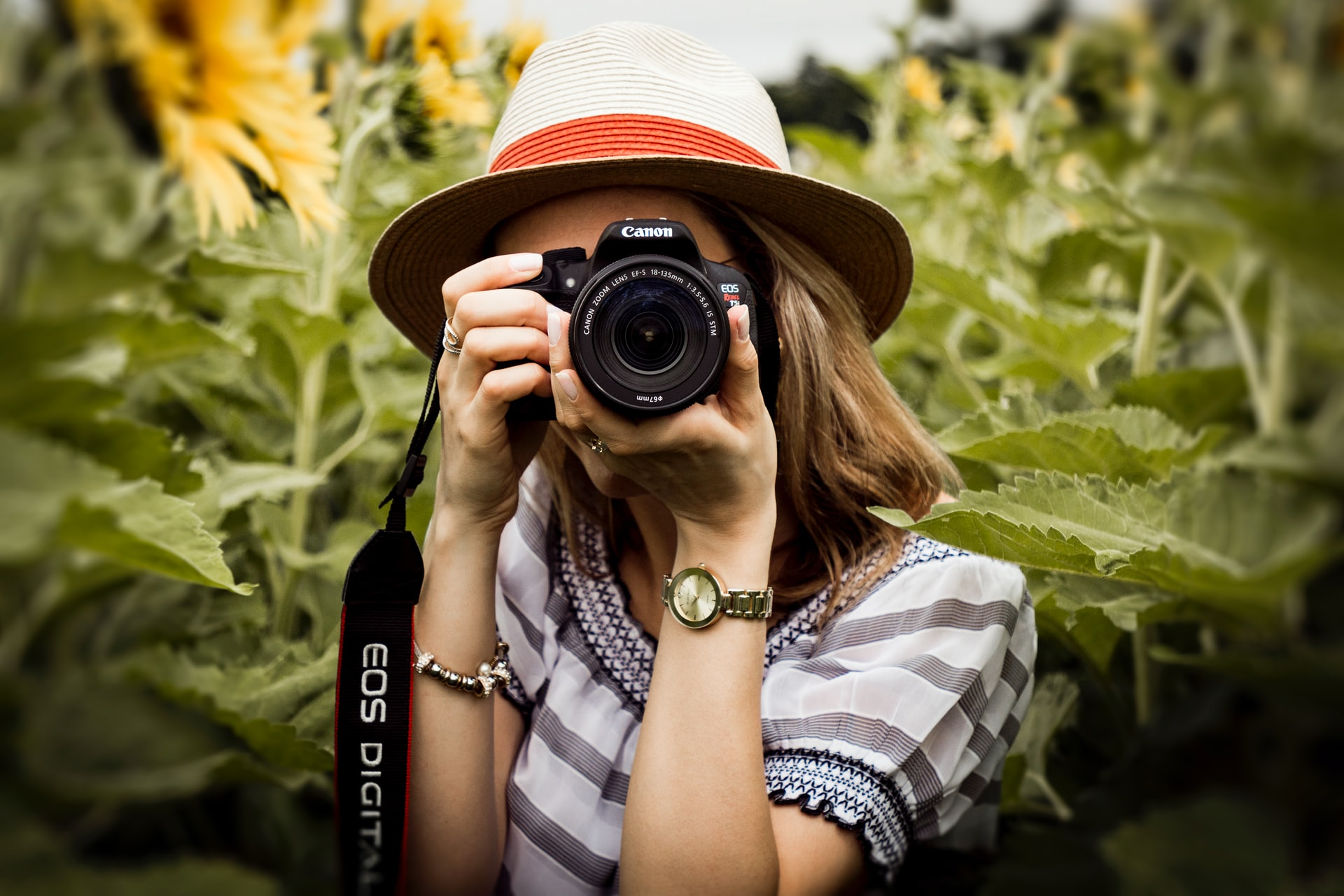 Is a Professional Photographer Worth the Money?