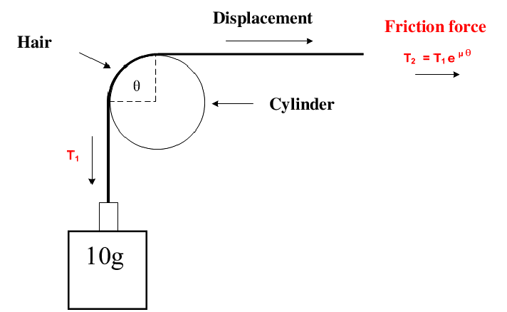 Friction-system-with-capstan-geometry