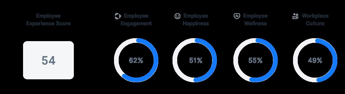 Employee Experience in Brazil