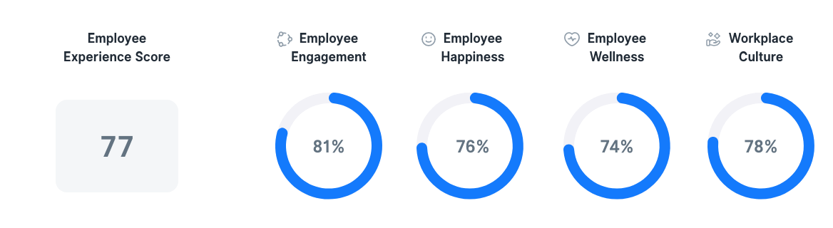Employee Experience in USA