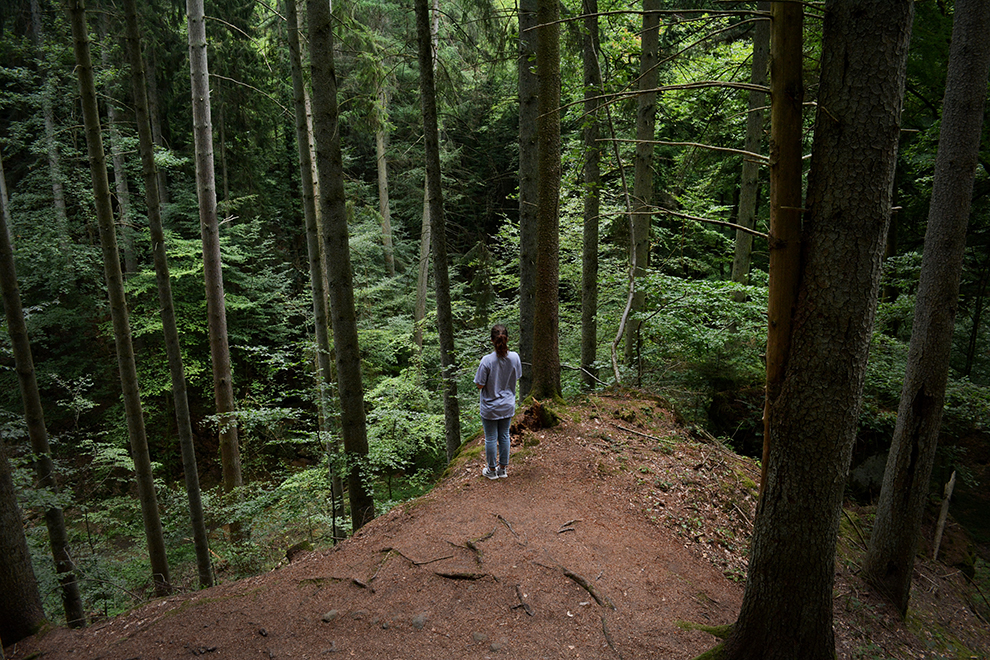Fanatieke wandeling door groene heuvels van de 112 kilometer lange Mullerthal Trail
