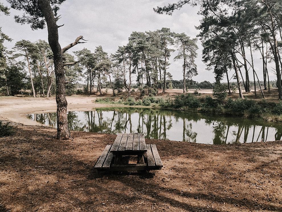 Picknicktafel met uitzicht over een meer en natuur