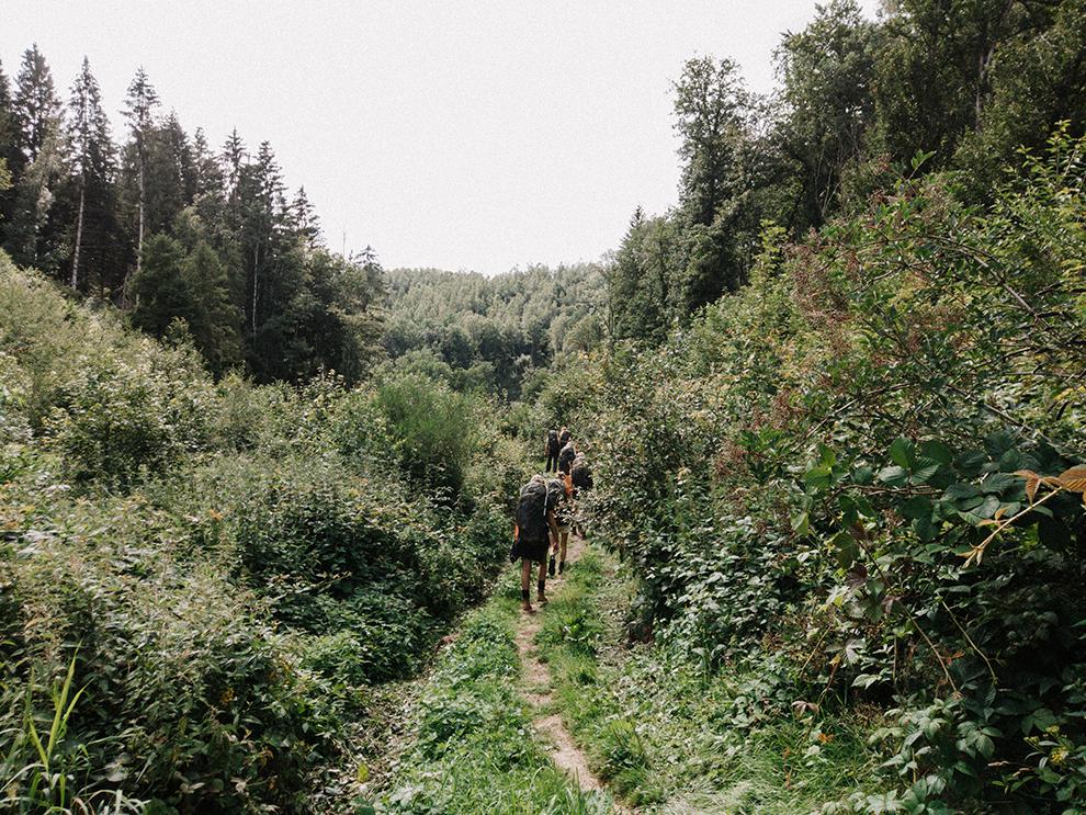 Groep wandelaars in de Belgische Ardennen