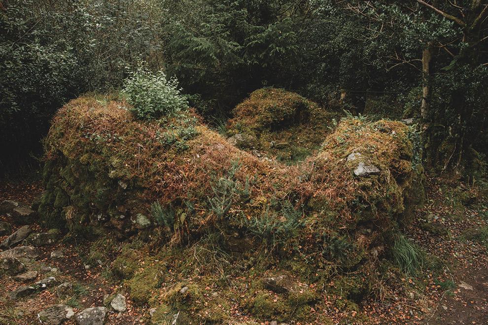 Met mos begroeide ruïne in Ierland