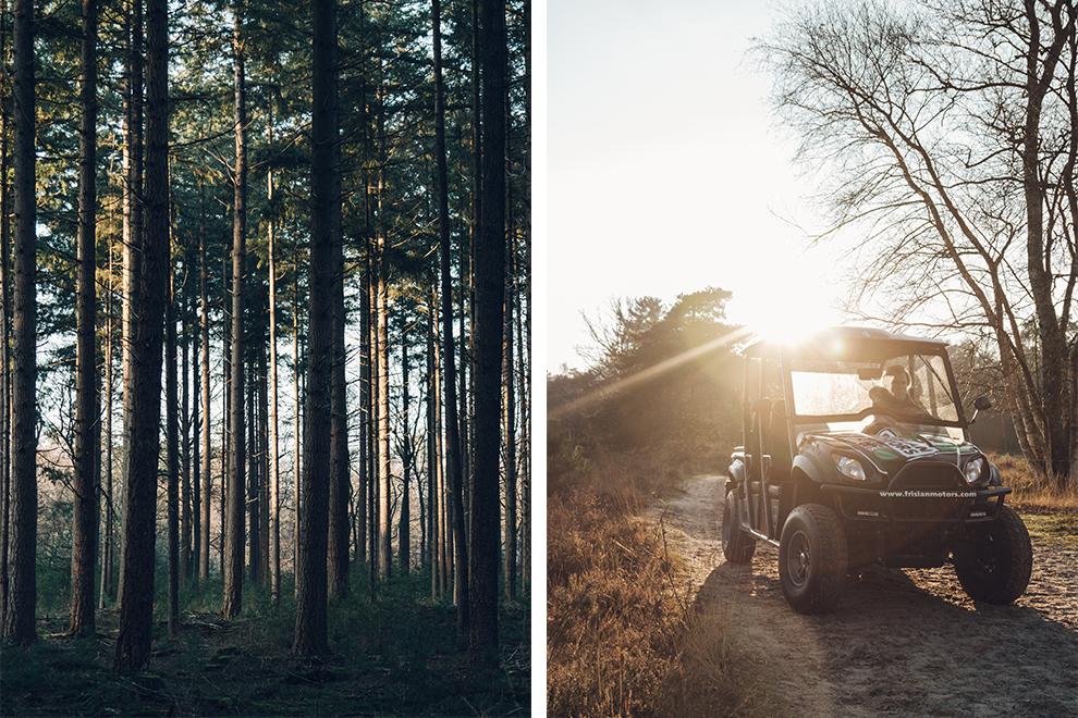 Met een elektrische buggy door de bossen van De Veluwe