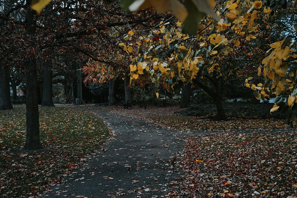 Donkere, grijze herfstdag in het stadspark van Maastricht