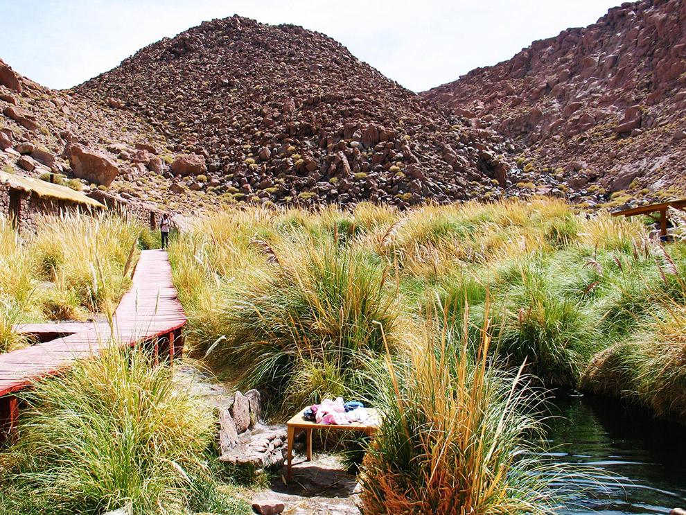 Tussen riet verstopte warmwaterbronnen in de woestijn van Chili