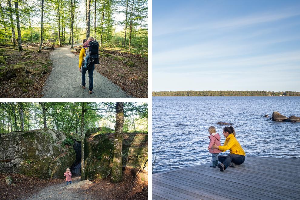 Wandelen door eeuwenoude beukenbossen en pauzeren aan het meer