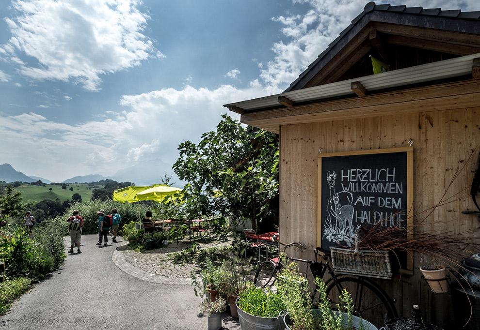 Wandelen door de Haldihof boomgaard bij Luzern