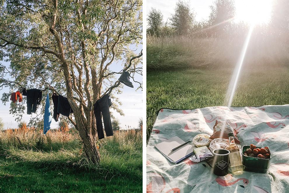 Was laten drogen en picknicken tijdens een microavontuur in het Lauwermeersgebied