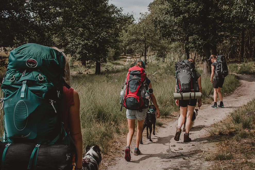 Wandelaars met rugzak lopen over een pad