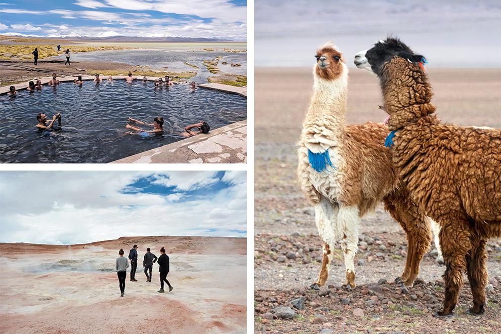 Warmwaterbronnen, geisers en lama's in de hoogvlaktes van Bolivia