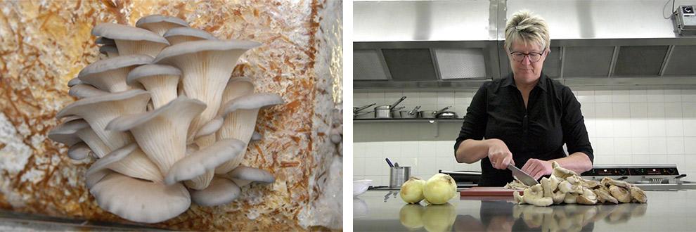 Kok in de keuken kookt met exotische paddenstoelen in Brabant