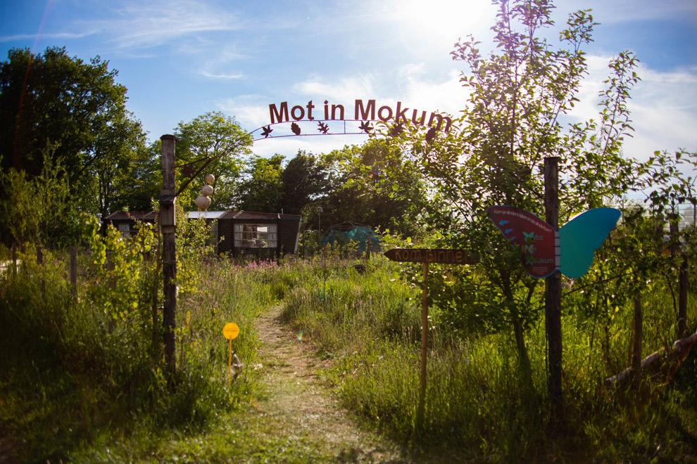 Entreepoort glamping Mot in Mokum