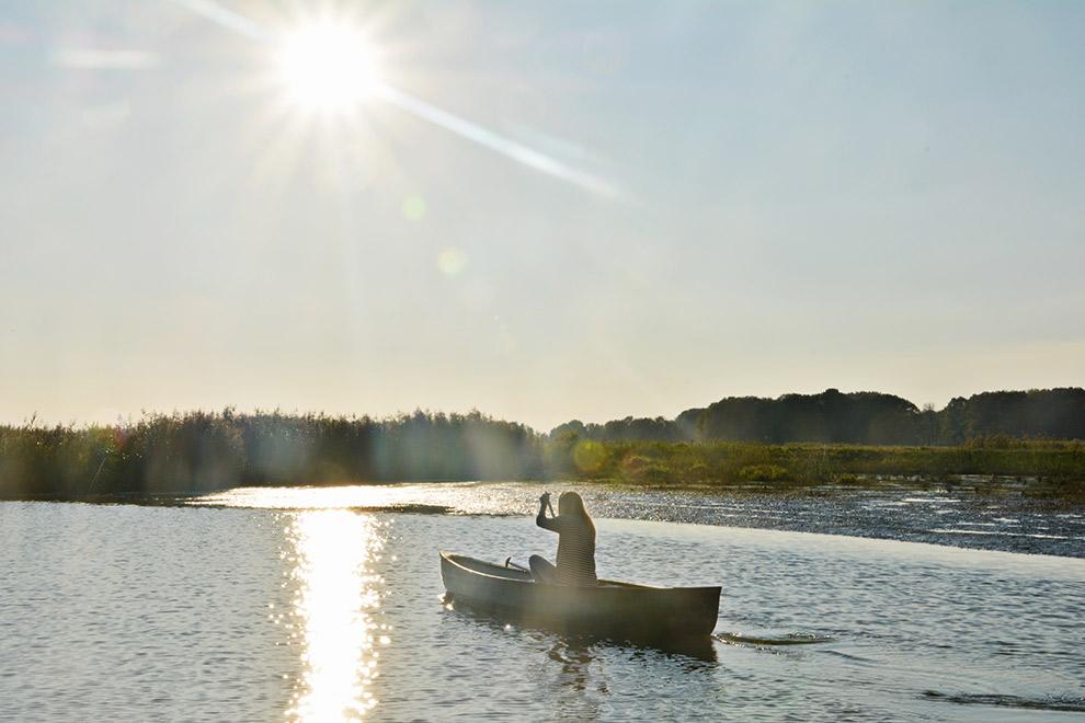 Kanoën op een zonnige dag in de Biesbosch