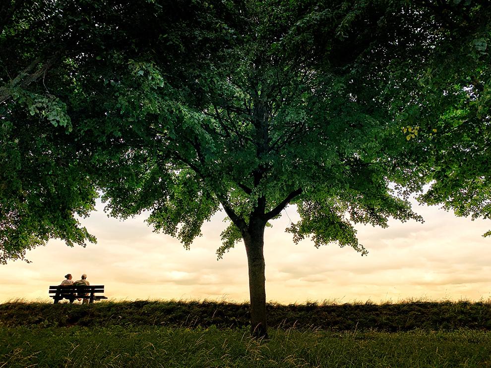 Een koppel zit op een bankje met uitzicht over de natuur