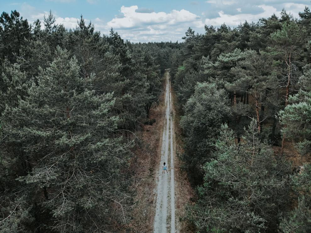 Dronefoto van de bossen in de Veluwe
