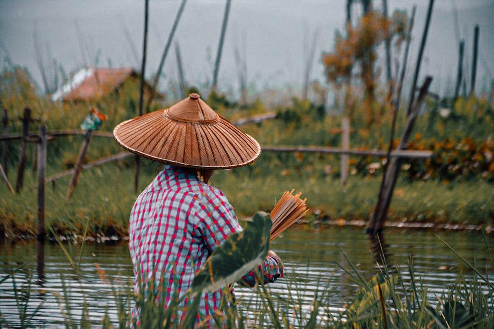 Vrouw met bamboestokjes op lokale markt