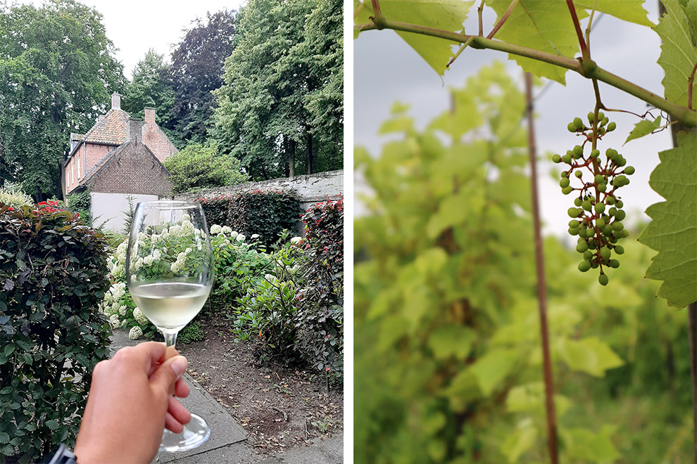 Wijn proeven in de tuinen van Sint Catherinadal