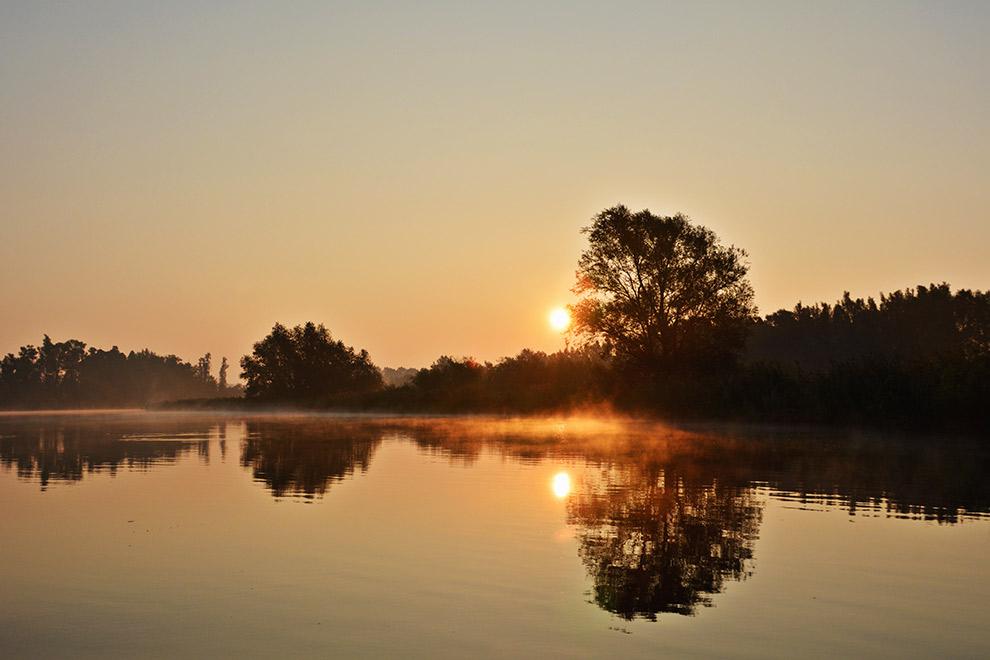 Magische zonsopkomst in de Biesbosch