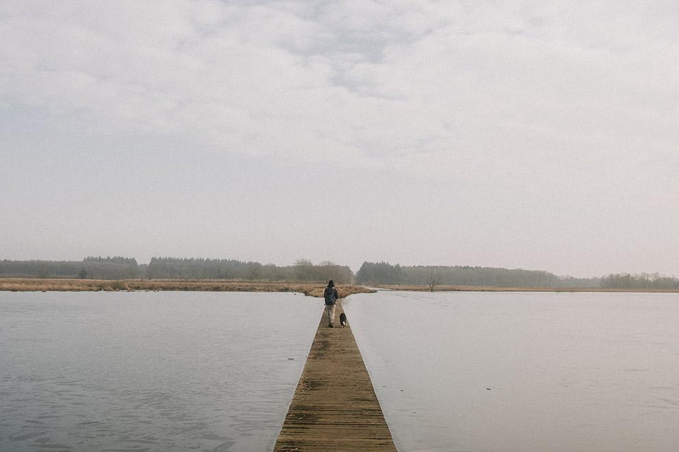 Wandelen over houten vlonder in de Nederlandse natuur