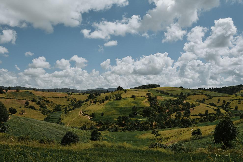 Wandeland langs groene weilanden tijdens trektocht in Myanmar