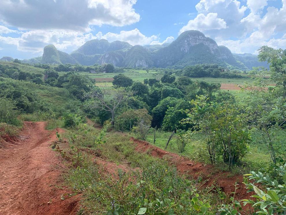 Rood zand en groene bebossing in de Viñales Vallei in Cuba