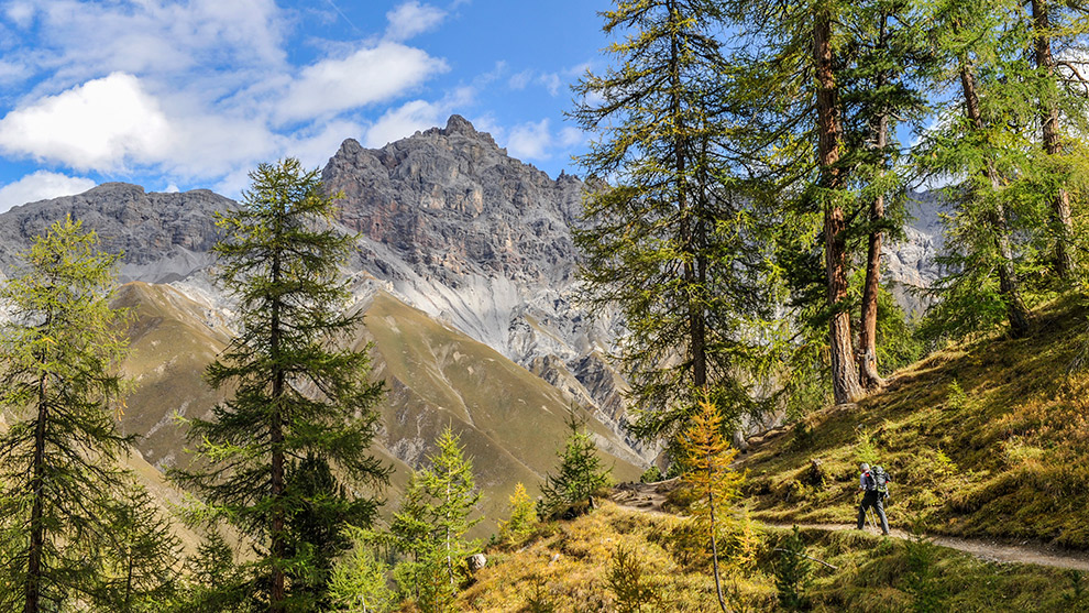 Wandelen tussen loofbomen en spitse bergtoppen in Zwitserland