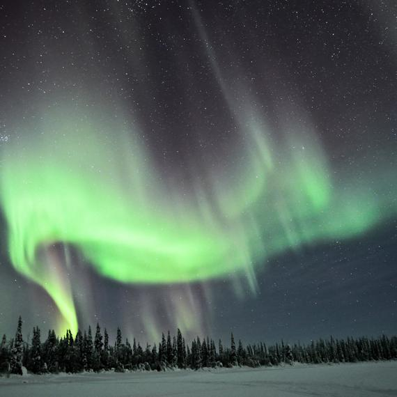 A magical night under the northern lights