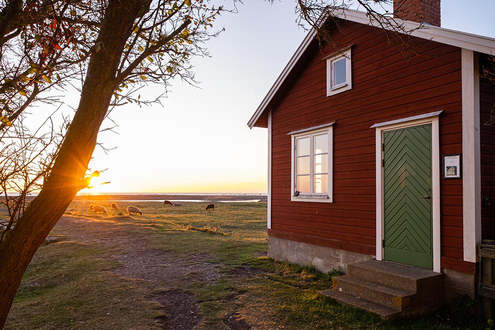Typisch Zweeds rood vakantiehuisje bij zonsondergang