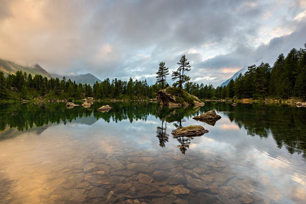 Groene loofbomen weerspiegelen in kalm water