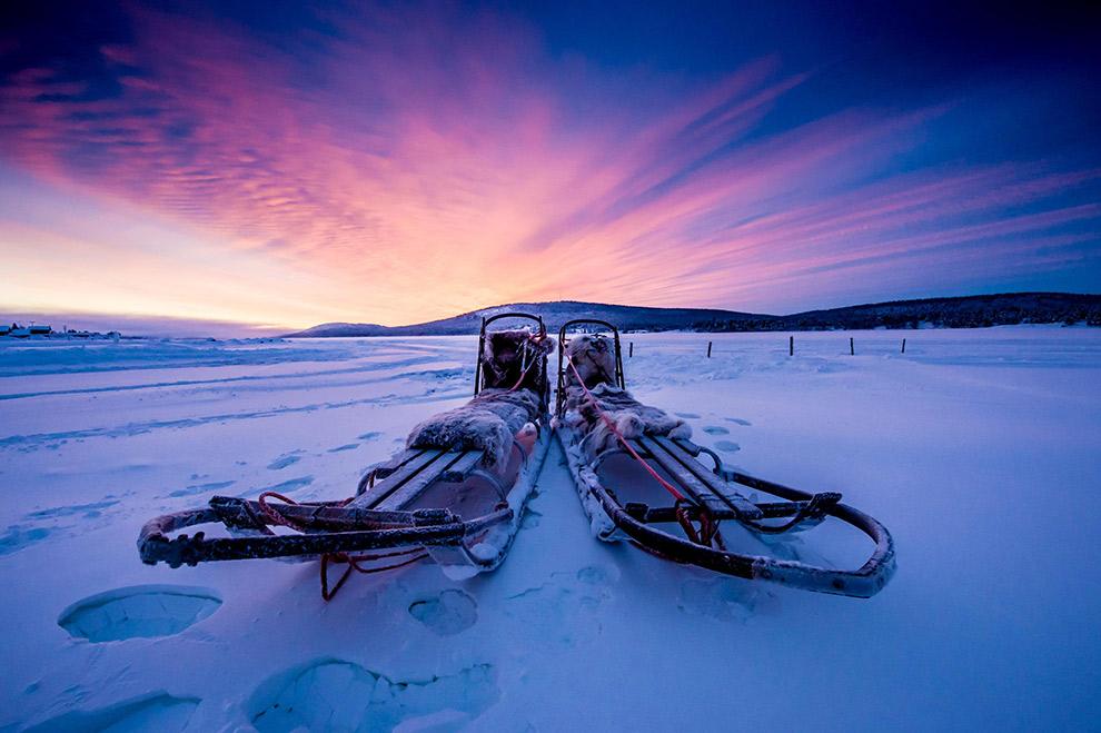 Op avontuur met huski's in een winters Zweden
