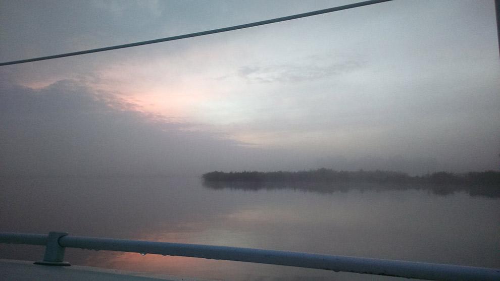 Mist hangt over de Nel in Haarlem
