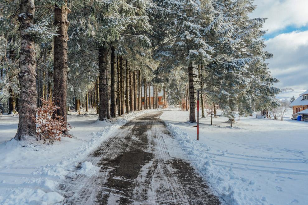 Sneeuw in het Zwarte Woud in Duitsland