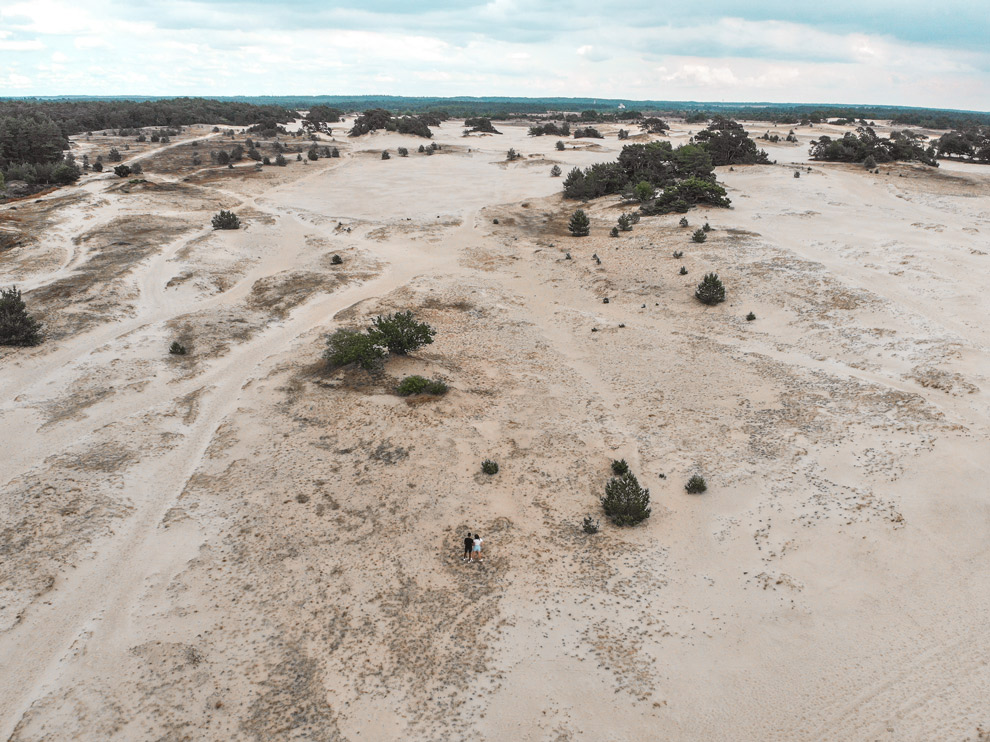 Uitzicht over de zandvlakte van Kootwijkerzand