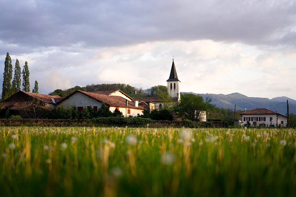 Platteland omringd door groen in het zuiden van Frankrijk