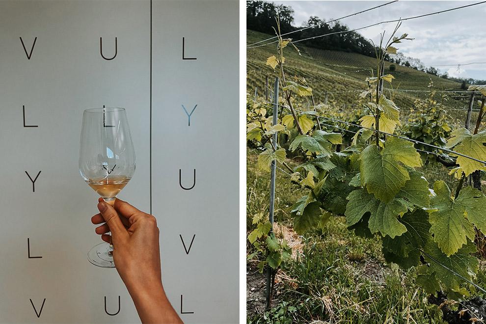 Zwitserse wijnen van kleine wijngaarden