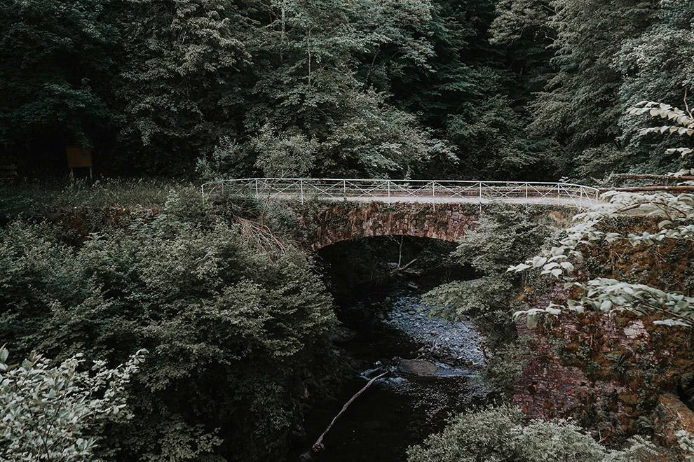 Verouderde brug verstopt tussen het groene landschap van Zwitserland