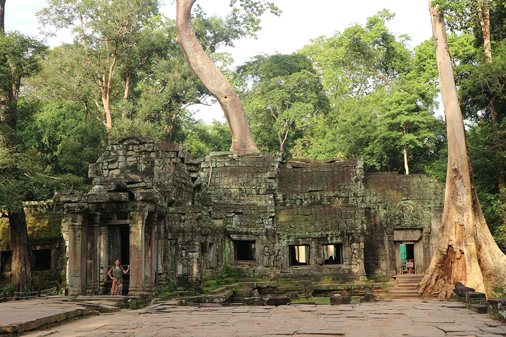 Ta Prohm Tempel in Cambodja bekend om film Tomb Raider