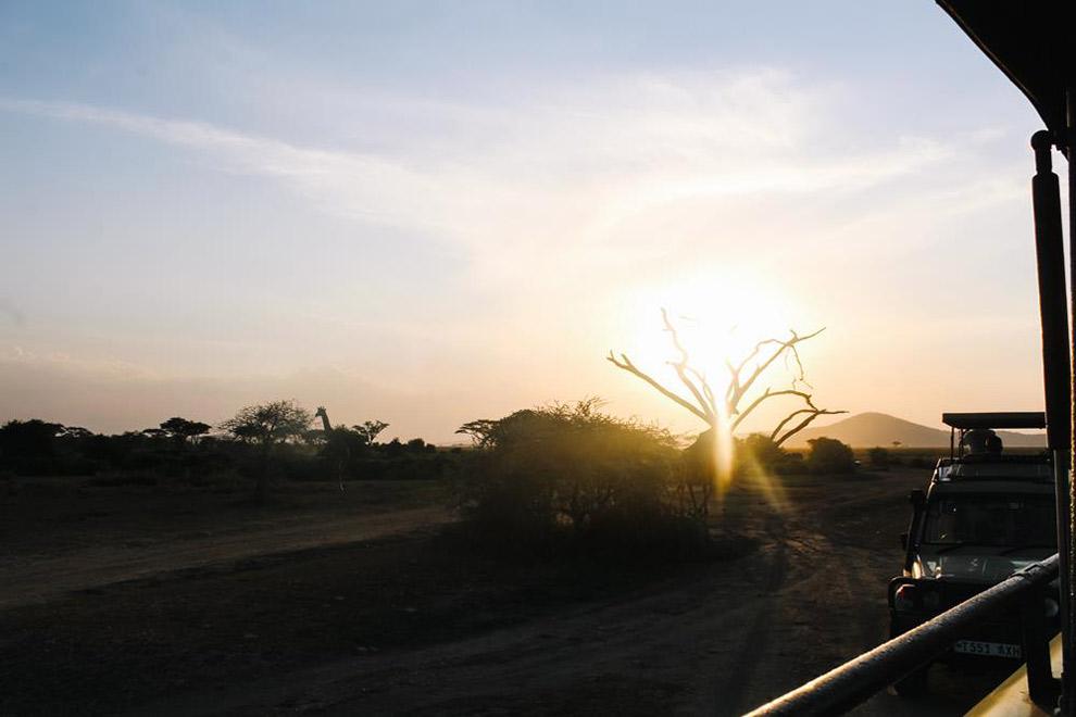 Uitzicht bij ondergaande zon vanaf safari jeep in Afrika