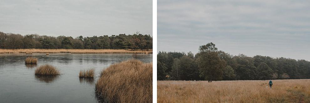Uitzicht op de grootste natte heideveld van Nederland