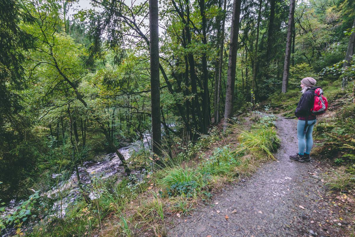 Vallée du Ninglinspo: sprookjesbos in de Ardennen