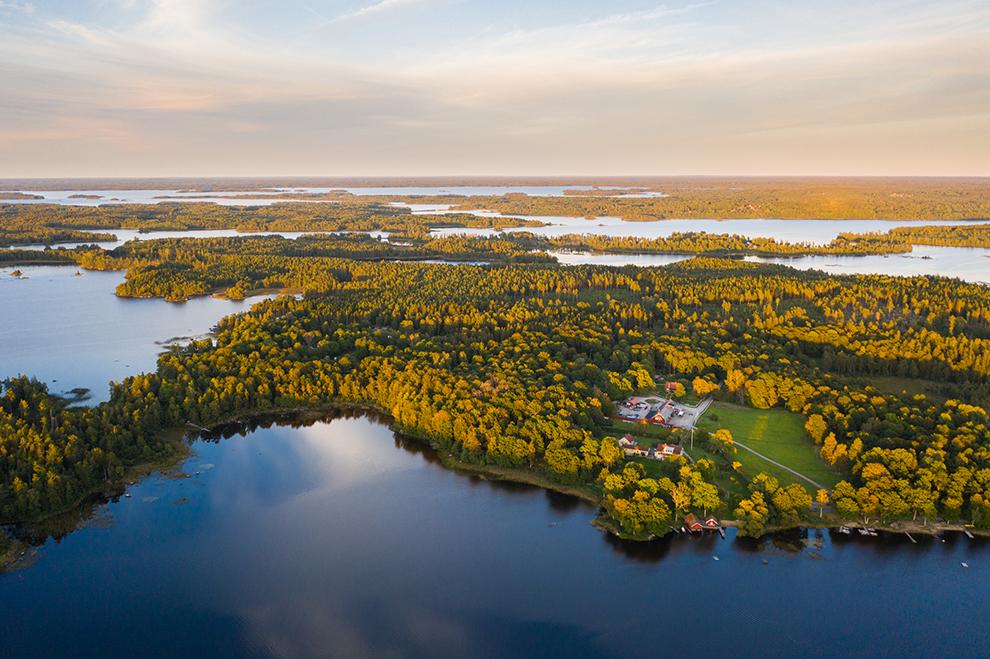 Zon kleurt boomtoppen geel van een met drone gefotografeerde Zweedse kustlijn