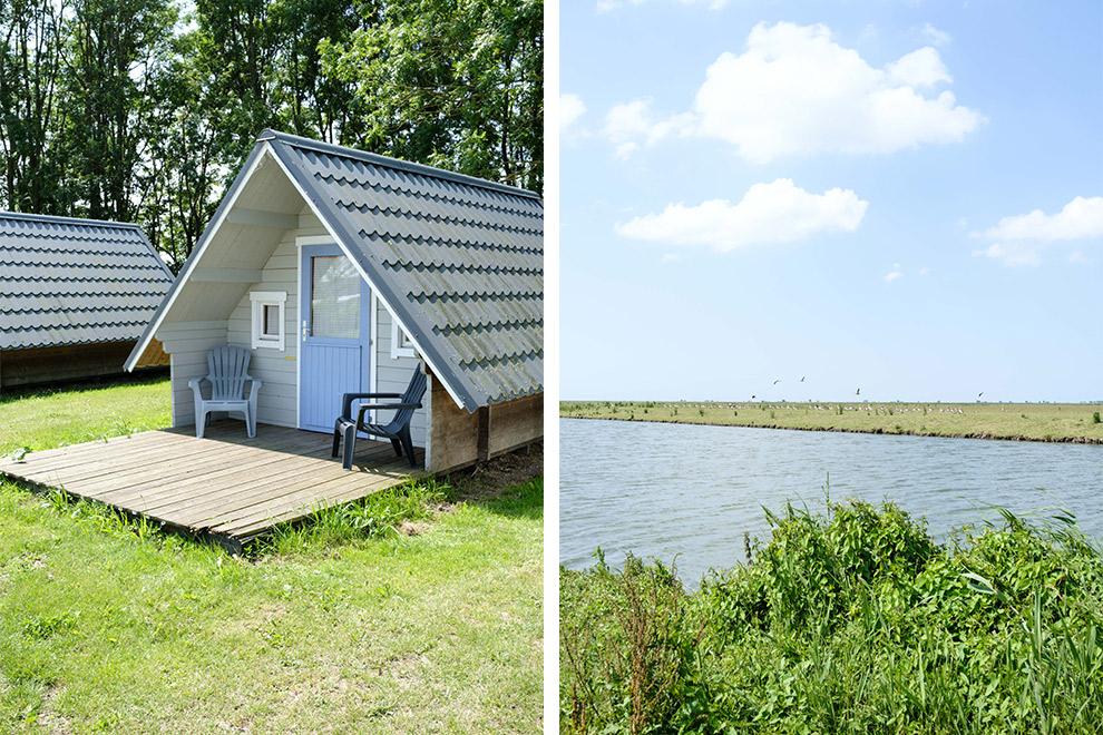 Schattige huisjes op camping Waterhout midden in de Noorderplassen