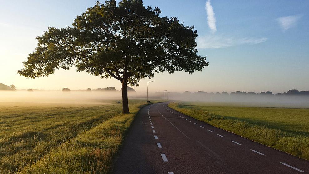 Laaghangende mist siert autoweg in Venray, Nederland