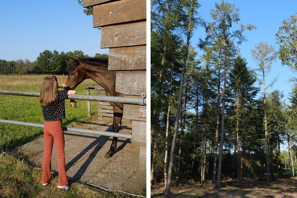 Nichtje Nova aait paard tijdens wandeling sokkeltocht
