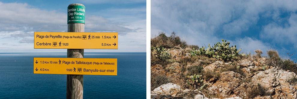 Omringd door wegwijsborden en cactussen aan de kust in Frankrijk