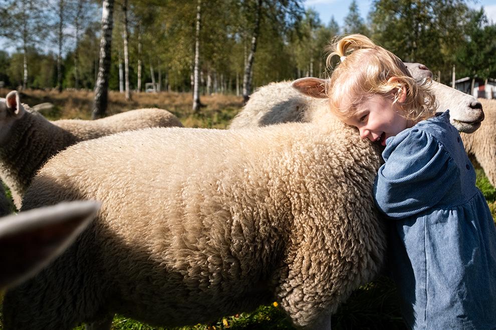 Kleine Maeve knuffelt zacht schaap