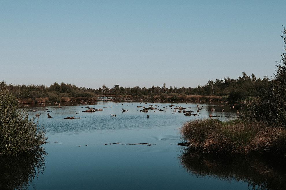 Meerbaansblaak De Groote Peel
